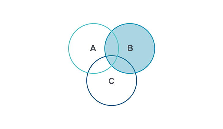 Venn Diagram PPT type 2